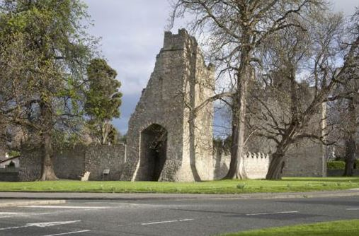 Monkstown Castle