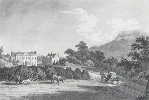 Ynysymaengwyn Estate