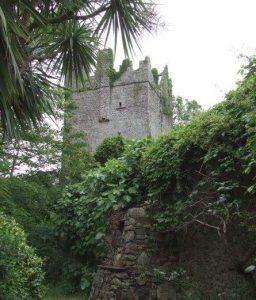 Baldwinstown Castle