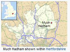 much hadham