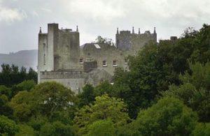 Kiltinan Castle