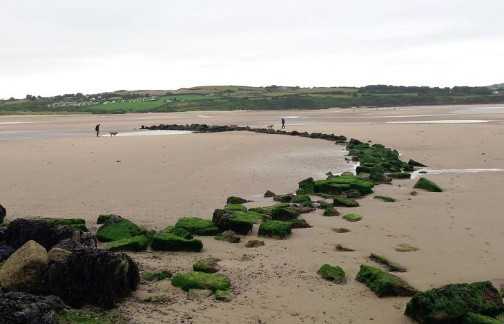 Remains of a medieval fish weir